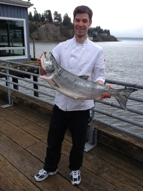 springer salmon